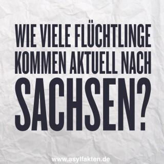 Wie viele Flüchtlinge kommen aktuell nach Sachsen?
